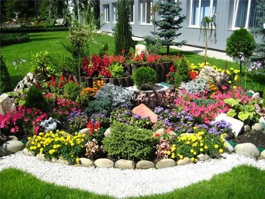 На фотографии альпийская горка, при устройстве которой применяются и хвойники, и прочие  цветущие карликовые растения