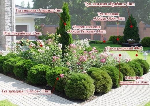Цветник из различных растений с туей Смарагд