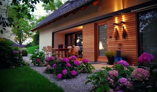 Садовые гортензии украшают палисадник возле дома