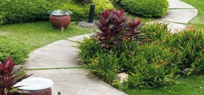 Руководство как сделать садовые дорожки из бетона на даче