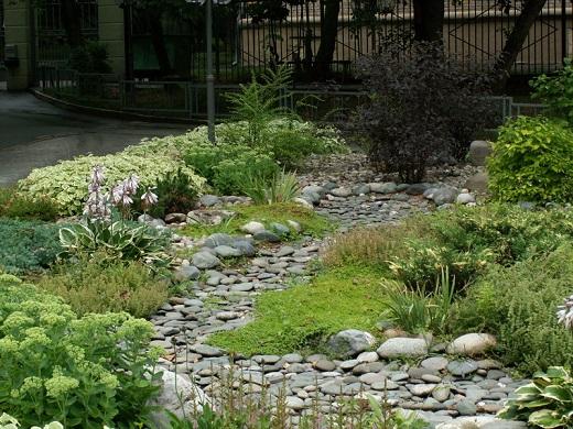Равнинный ручей в саду