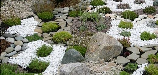 Красочный каменистый сад