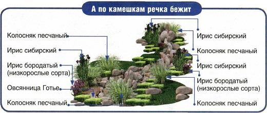 На картинке показана схема устройства сухого ручья на даче