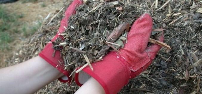 Обзор способов мульчирования почвы